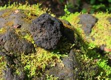火山岩石 库存图片