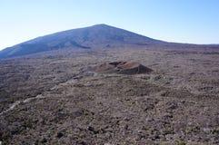 火山岩钉de la fournaise谷的妇女 库存图片