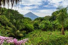 火山康塞普西翁角,尼加拉瓜 免版税库存图片