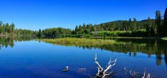 火山拉森的国家公园 图库摄影