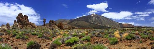 火山泰德峰的全景图象在海岛上的 库存照片