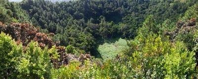火山火山口Trou辅助Cerfs-全景。毛里求斯 图库摄影