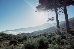 火山的山脉 库存照片