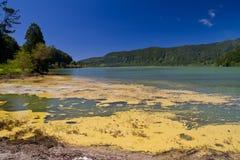 火山的湖Furnas 免版税库存照片