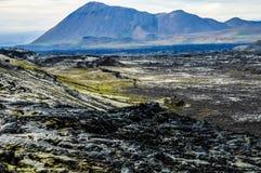 火山的熔岩荒野在冰岛 免版税库存照片
