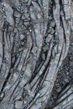 火山的石头关闭,大岛,夏威夷 免版税库存照片