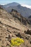 火山的风景在拉帕尔玛岛 caldera de taburiente 西班牙 免版税库存照片