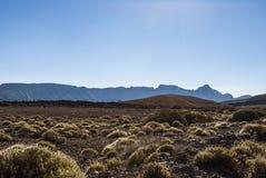 火山的风景(特内里费岛、坎那利岛,西班牙) 库存照片