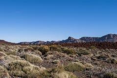 火山的风景(特内里费岛、坎那利岛,西班牙) 库存图片