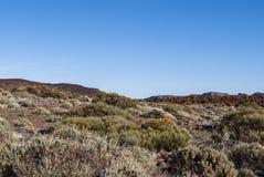 火山的风景(特内里费岛、坎那利岛,西班牙) 免版税库存图片