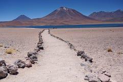 火山,阿塔卡马沙漠,智利 库存照片
