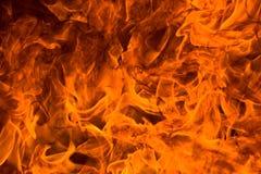 火愤怒 库存图片