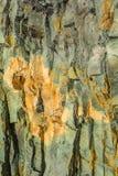 火成岩熔岩特写镜头 库存图片
