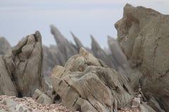 火星岩石 免版税库存照片
