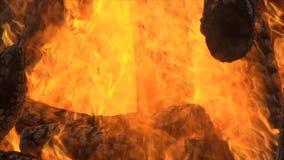 火是灼烧的木头 股票录像