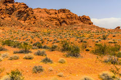 火有在灰色和棕褐色的石灰石紧贴的40,000英亩的国家公园谷明亮的红色阿兹台克砂岩露出II 免版税库存照片