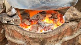火木炭Bruning在火炉的 股票视频