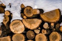 火木头和雪 库存图片