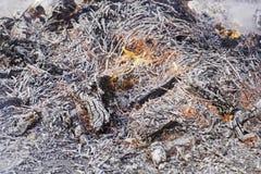 火木头炭烬 免版税库存照片