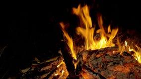 火本质上 从火的Bokeh 股票录像