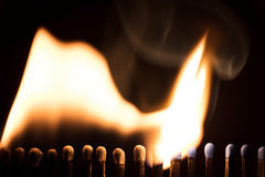 火柴梗烧,与火的链式反应和火焰 免版税库存照片
