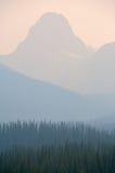 火森林烟 库存照片