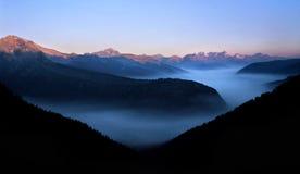火森林烟 库存图片
