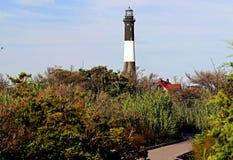 火海岛灯塔通过刷子 图库摄影
