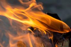 火火焰从木头的 图库摄影