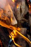 火火焰从木头的 库存照片