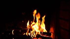 火火焰在黑背景的 在壁炉的燃烧的木头 股票录像