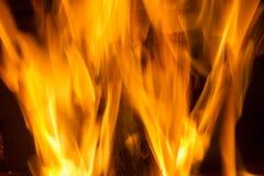 火火焰在黑背景的 库存图片