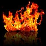 火火焰查出的反映 库存照片
