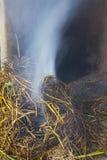 火灼烧的米秸杆 库存照片