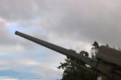 火炮葡萄酒 库存图片