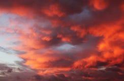 火热的天空明亮的红色云彩 库存图片