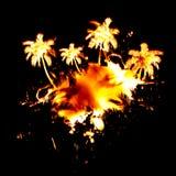 火热的棕榈树 库存图片
