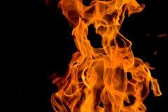 火热的玩具熊 图库摄影