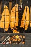 火焰三文鱼的准备在开阔的壁炉的开火的用木头装载了 库存图片