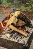 火焰冠在灼烧的木头的 库存照片