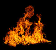 火焰查出 库存图片