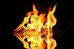 火焰火 库存照片
