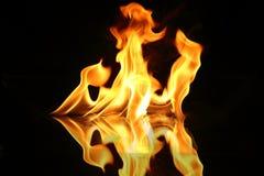 火焰火 免版税库存图片
