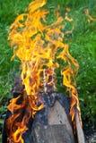 火焰的舌头在火盆的 免版税库存图片