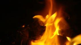 火焰 股票视频