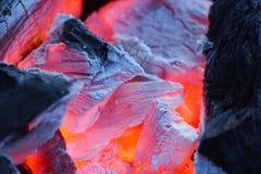 火特写镜头与灼烧的木炭的 图库摄影