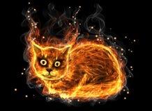 火猫 皇族释放例证