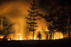 火的元素 库存照片