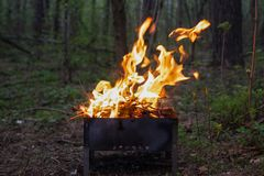 火的火焰在一串烤肉的在一个绿色森林里 免版税库存照片