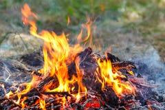 火的照片 与火焰的舌头的灼烧的火 燃烧的b 库存照片